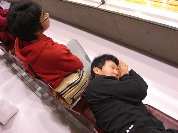 トマの膝枕で寝るエーハラ