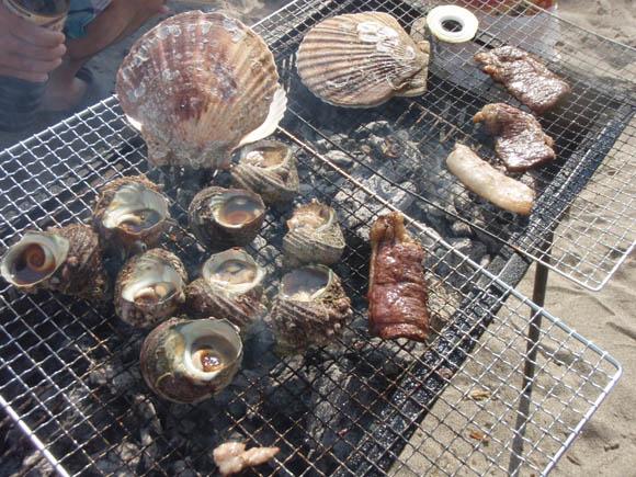 WARAちゃんが買ってきた貝たち